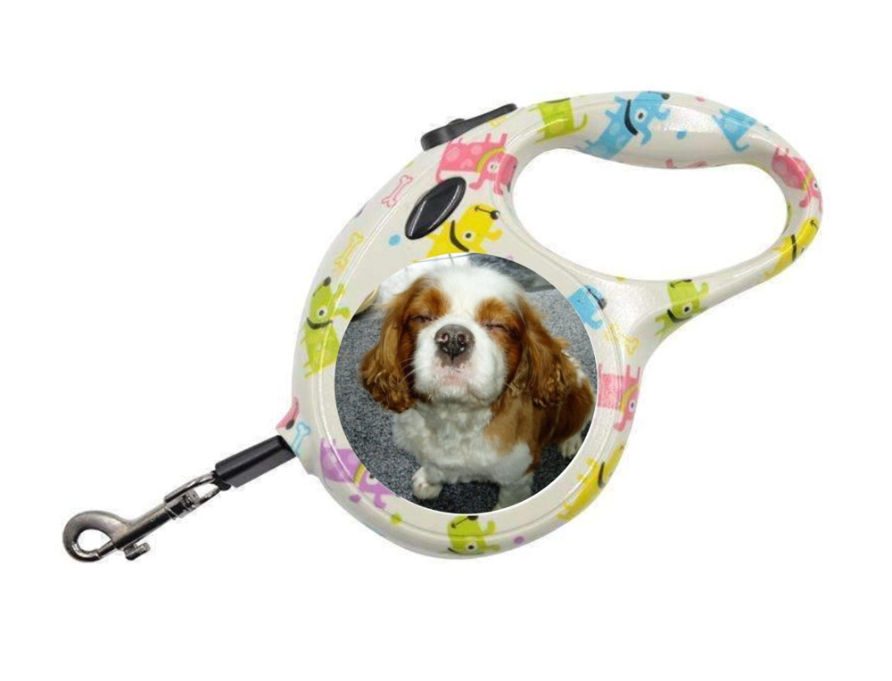 Personalised Retractable Dog Lead - Dog Design